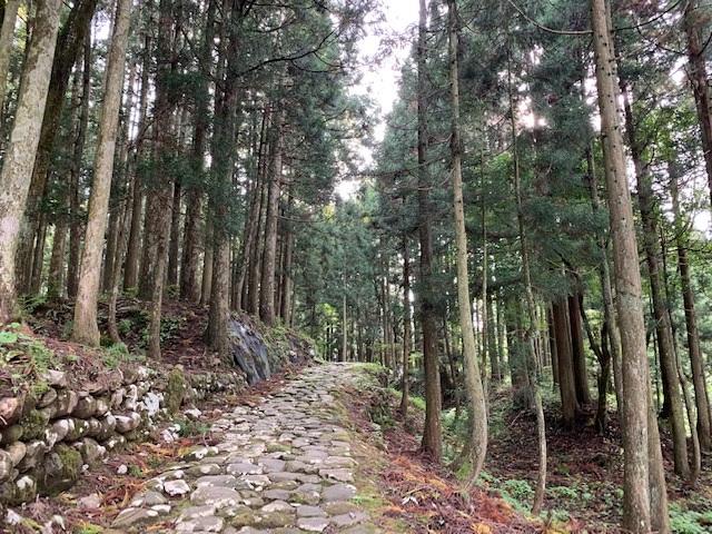 https://www.naganotomato.jp/nagatoma/ririko/assets/images/hakusanjinjya91.jpg