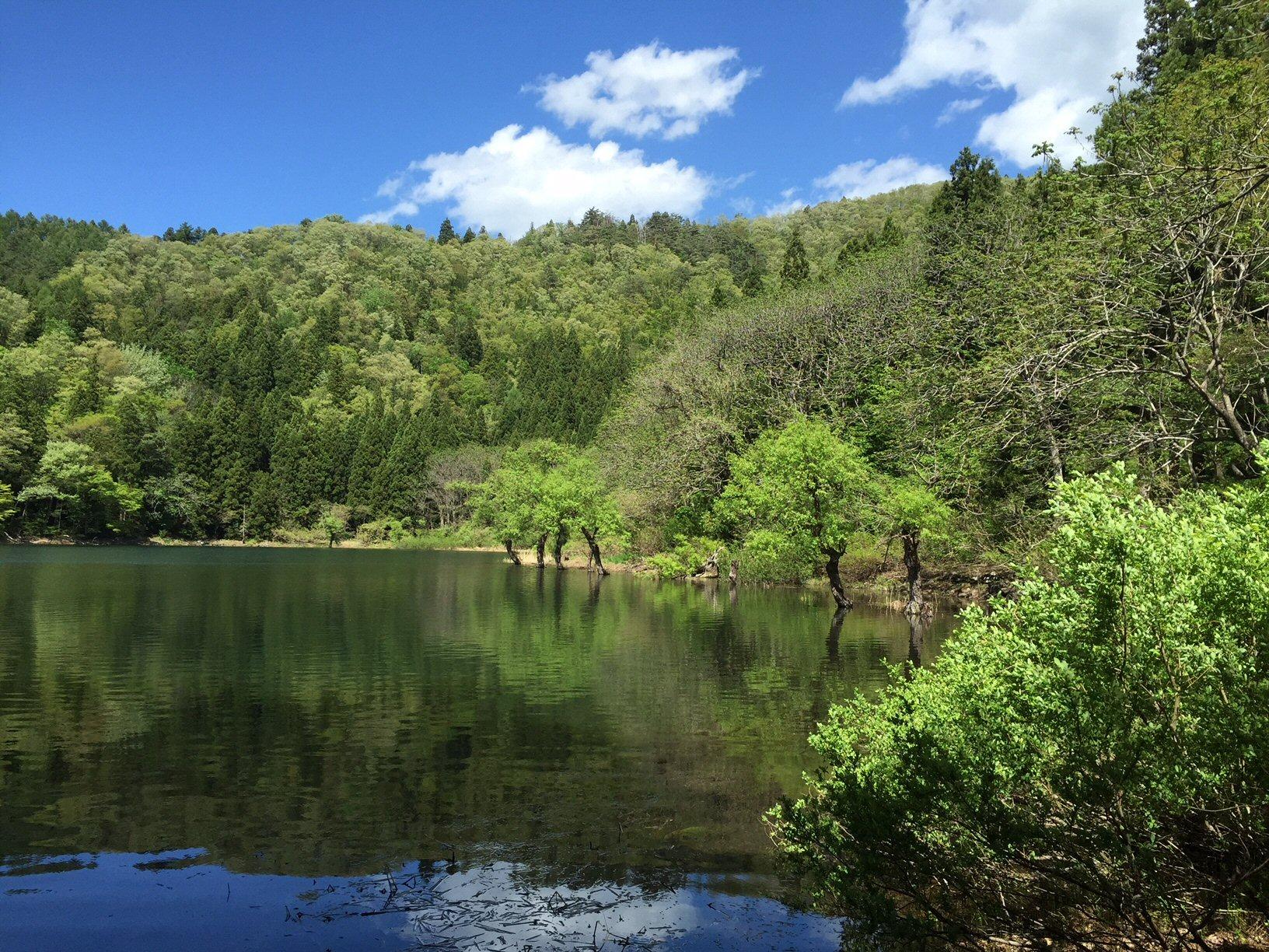 新緑めぐり ~北竜湖~ - りりこ...