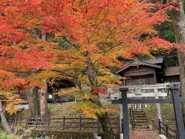 https://www.naganotomato.jp/nagatoma/ririko/assets/images/namonaijinjyattewakedenai1.jpg