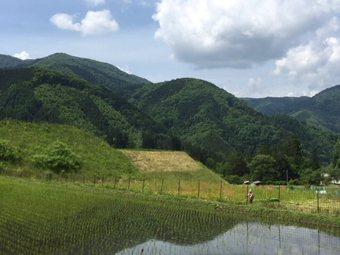 abouwonuke5.jpg