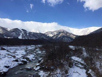 arupusukimoga4.jpg