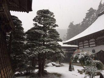 yukihuri19.jpg