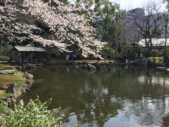 yasukuni5.jpg