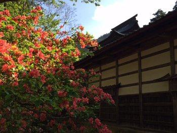 nagayamon2.jpg