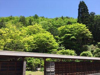 reisyoujimomiji5.jpg