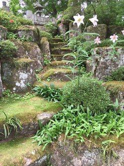 yamasasayuri4.jpg