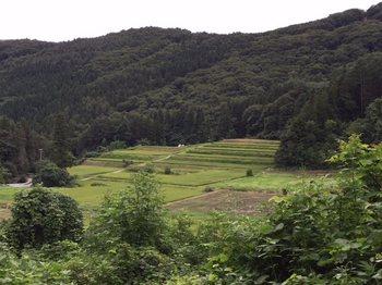 yamanonaka9.jpg