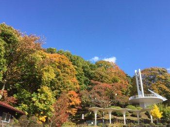 kirisuwakotate7.jpg