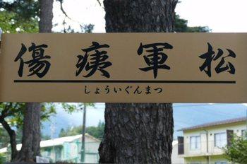 matukizu3.jpg