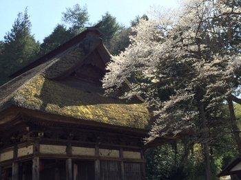 kourinnjiiroiro3.jpg