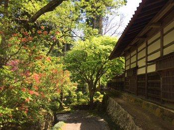satoyamajituduki3.jpg