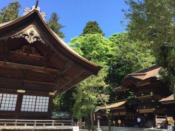 suwaniomairi1.jpg