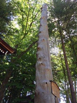 suwaniomairi2.jpg