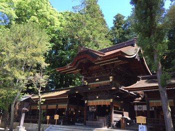 suwaniomairi3.jpg