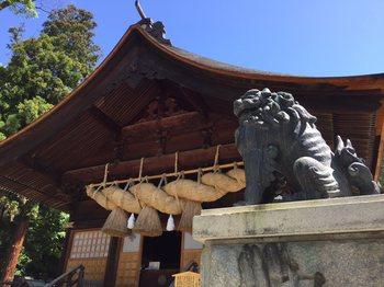 suwaniomairi4.jpg
