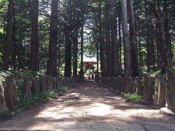 kiyomizuhisasuburi2.jpg