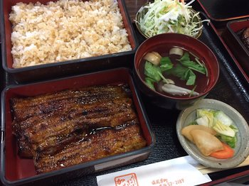 midorikosyoka4.jpg