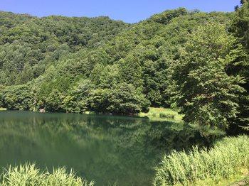 aokikosonohoka6.jpg