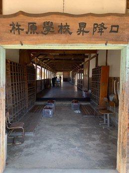 kineharahisasuburi3.jpg