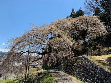 kuyotonosadaew1.jpg
