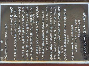 kuyotonosadaew2.jpg