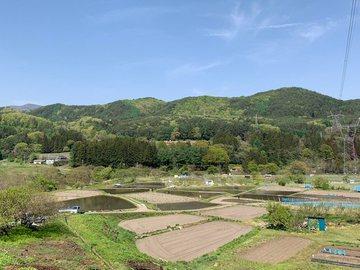 satoyamataue1.jpg