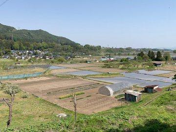 satoyamataue4.jpg