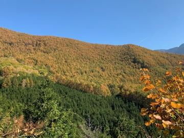 panoramakoueen6.jpg
