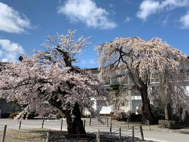 asahikouminkan1.jpg