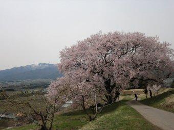 kaminotairasiro2.jpg