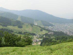 kminoaoranndesuyomidori1.jpg