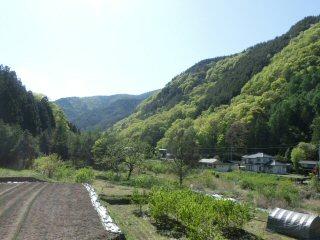 kourinji8.jpg