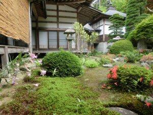 sasayuri2.jpg
