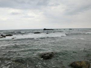 tarajiru20154.jpg