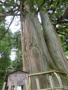 toasukinakasya4.jpg