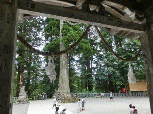 toasukinakasya5.jpg